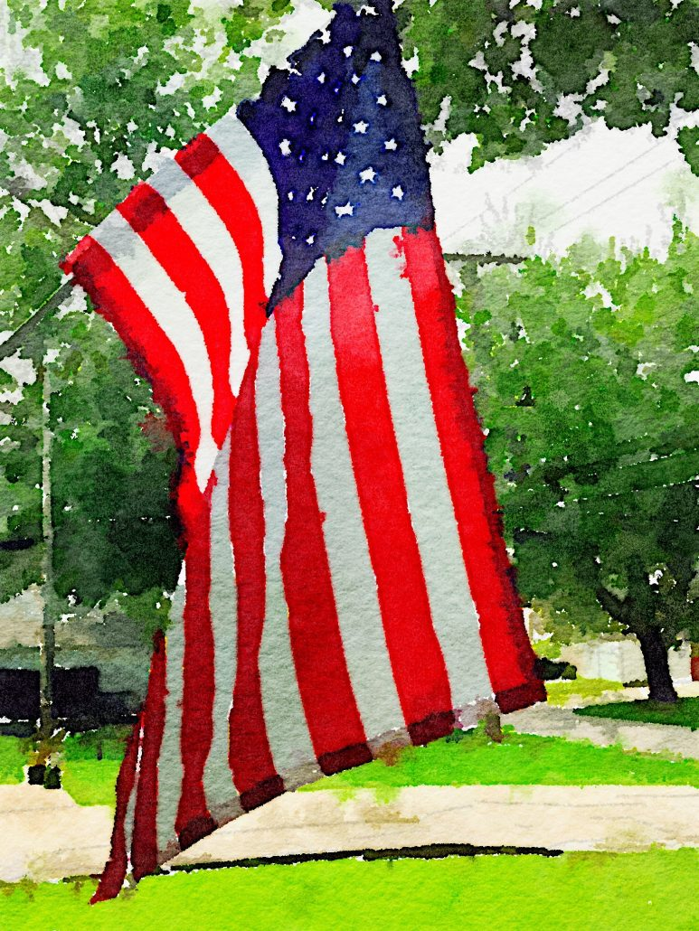 The Colors of Freedom
